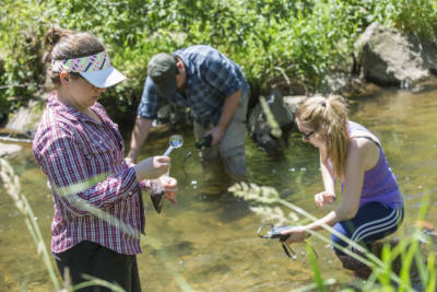 Penn State students explore Conoy Creek at Masonic Village